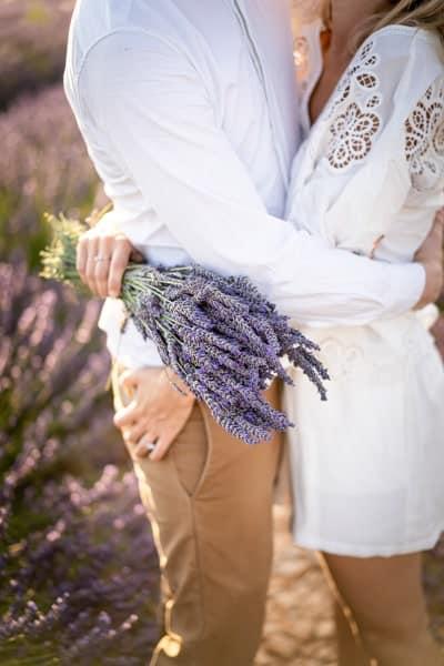 bouquet de lavandes a valensole